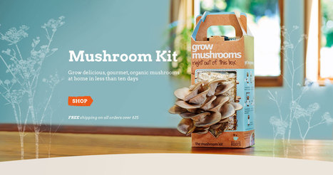 Back to the Roots | Free Shipping on AquaFarm & Mushroom Kit | Aquaponics~Aquaculture~Fish~Food | Scoop.it