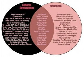 Monsanto & Co : Disparition des abeilles, menace de guerre globale ... - AgoraVox | ogm | Scoop.it