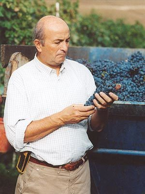 Enzo Mecella Le Marche: Verdicchio Man | Wines and People | Scoop.it