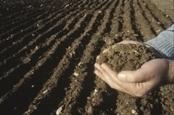 5 raisons pour lesquelles le sol est essentiel pour l'avenir durable de la planète | Environnement et développement durable, mode de vie soutenable | Scoop.it