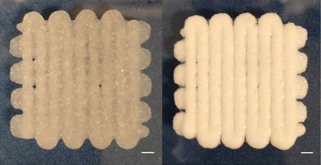 The bioprinted 'play dough' capable of cell and protein transfer | Amazing Science | Scoop.it