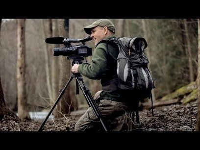What Inspires You: The Wildlife Videographer - Environment - GOOD | Sustainable Futures | Scoop.it