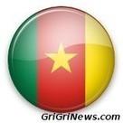 Quatre cent soldats décorés de la médaille de la Vaillance au Cameroun | Actualités Afrique | Scoop.it