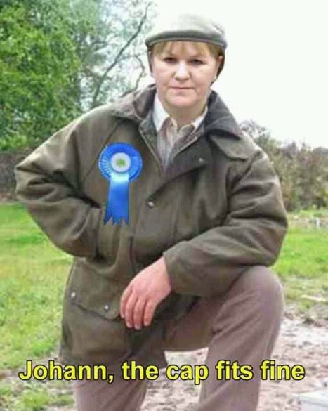Tory poster girl Lamont. | YES for an Independent Scotland | Scoop.it