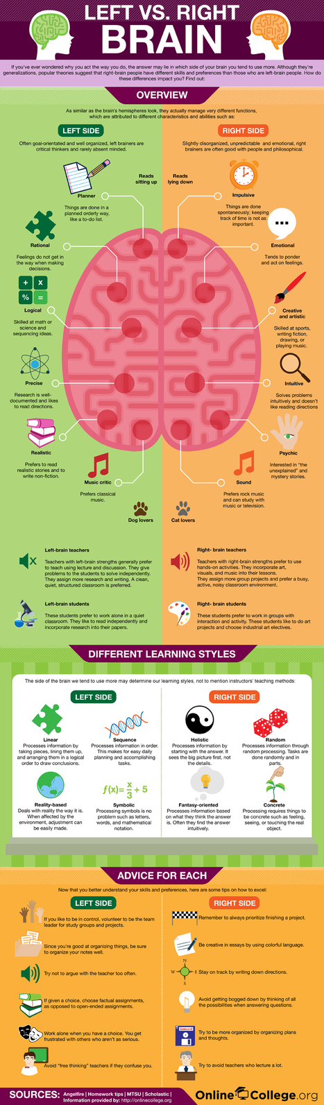 Are You Left or Right Brain? [Infographic] | Academic Research, Methods, Tools, Publishing | Scoop.it
