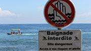 Un écologiste nagera dans une zone appréciée des requins - la Tribune de Genève | Actualités écologie | Scoop.it