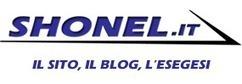 The Social Media Report 2012 by Nielsen   Shonel.it   BlogItaList   Scoop.it