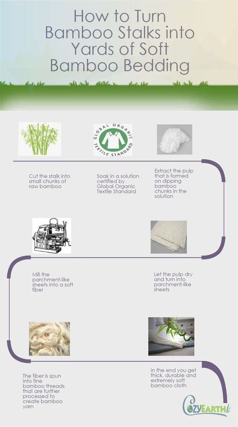 The Steps Used for Converting Bamboo into Bamboo Cloth & Bedding « Dana Smith's blog | Permaculture, Environment, & Homesteading | Scoop.it