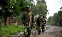 امريكا تدعو لضبط النفس مع تصاعد القتال في شرق الكونجو | Technology, Social Media, News | Scoop.it