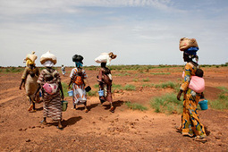 NIGER: Small steps towards a sustainable future | iGCSE Articles | Scoop.it