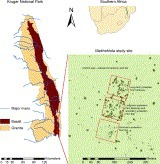 The relative influence of fire and herbivory on savanna three-dimensional vegetation structure | Remote Sensing - Vegetation Classification & Condition | Scoop.it