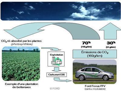 Le boom des biocarburants - Transports écologiques - Doctissimo | Manger ou conduire: les biocarburants sont-ils une solution durable? | Scoop.it