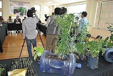 Inicia programa de agricultura urbana en Neza para producir hortalizas en 5 mil viviendas | Cultivos Hidropónicos | Scoop.it