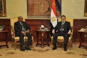 """Egyptian parties believe ICC-wanted Bashir """"a liability"""", opposition figure says 