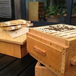 Saving Bees in Open Source: Interview to Tristan Copley Smith and Open Source Beehives project   Peer2Politics   Scoop.it