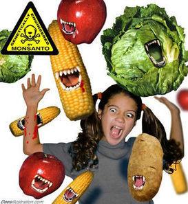 """Velo ya: """"El mundo según Monsanto"""" en VeoVerde - VeoVerde   alimentos   Scoop.it"""