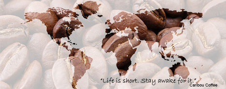 World of Coffee | Dubai | Scoop.it