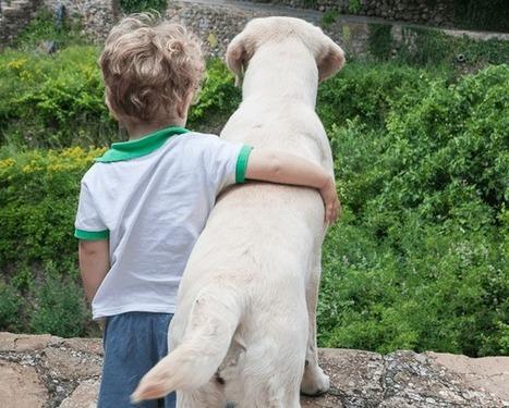 Los perros, 'héroes caninos' anónimos en ayuda de enfermos de Alzheimer o diabéticos | Personas y Animales | Scoop.it