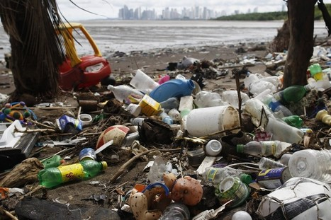 How Bad Is Ocean Garbage, Really? | All about water, the oceans, environmental issues | Scoop.it