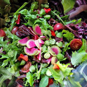 Garden Dibbers, Salad Bar & Garden Answers Shared - Terroir Seeds | Food Security, Permaculture, & Environment | Scoop.it