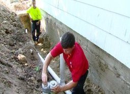 Thirsty tree roots causing homeowners costly sewer damage   Home Improvement   Scoop.it