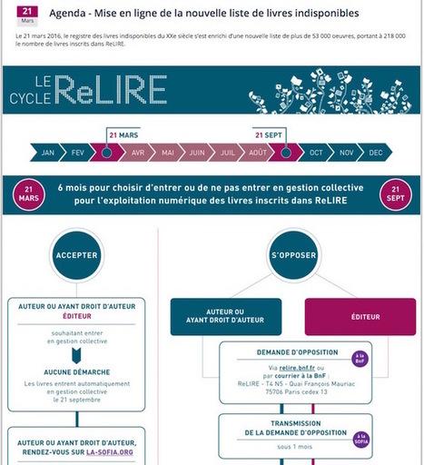 ReLIRE : 220000 œuvres indisponibles maintenant référencées | Bibliothèques numériques | Scoop.it