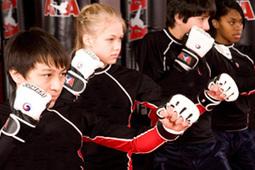 Martial Arts Fitness Programs   Martial Arts Training   Scoop.it
