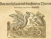 Plinio el Viejo y la primera enciclopedia.   Literatura latina   Scoop.it
