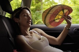Does Fanning Help on a Hot Day? | Heart and Vascular Health | Scoop.it