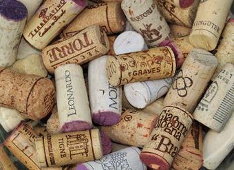 Les défauts du vin : le goût de bouchon | 694028 | Scoop.it