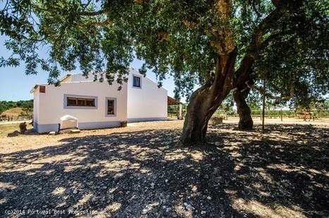 Country house with stables in Barão de São João, Lagos | Portugal Best Properties | Scoop.it