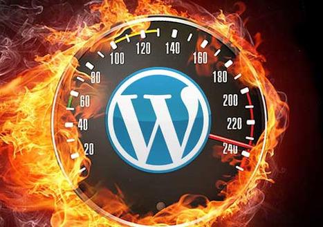 Faster WordPress : Demand For Speed | Seo | Scoop.it