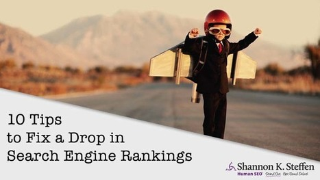 It Did What? 10 Tips to Fix a Drop in Search Engine Rankings. | Surviving Social Chaos | Scoop.it
