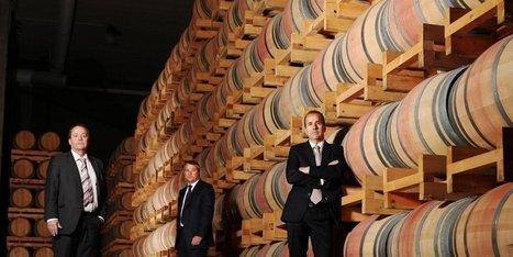 Vin : Castel va construire à Bordeaux une usine viticole géante. | Verres de Contact | Scoop.it