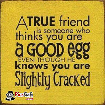 30+ Best Collection Of Funny Friendship Quotes | Envirocivl | Scoop.it