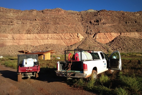 Invasive Weed Treatment near Moab, UT | GarryRogers Biosphere News | Scoop.it