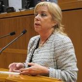 Serrat no descarta ninguna actuación para recuperar los bienes aragoneses, incluida la expropiación. Fotos en lainformacion.com | rpinolb | Scoop.it