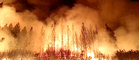 Yosemite's Massive Rim Fire Fueled by Climate Change | Making the World a Better Place | Scoop.it
