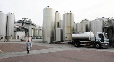 Amende aux Maîtres laitiers du Cotentin : le directeur général abasourdi - Ouest-France | Le Fil @gricole | Scoop.it