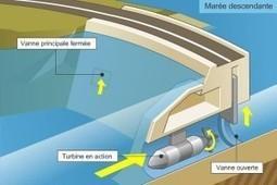 L'énergie marémotrice : un potentiel difficile à exploiter   Le groupe EDF   Scoop.it