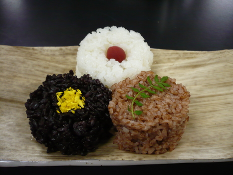 """""""The Birth of a Black Rice Gene"""": Empirical evidence for Emperor's Rice   Plant Science Today   Plant Biology Teaching Resources (Higher Education)   Scoop.it"""