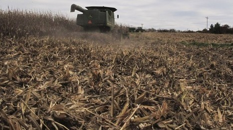 Ethanol: Clean Energy Or The Source Of New Environmental Concerns? | Biorenewable Chemicals & Energy | Scoop.it