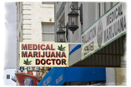 Is Marijuana the Answer to Drug Addiction? | Marijuana Laws | Scoop.it