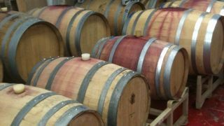Wine lovers boot camp lets you make your own wine - Fox News | 'Winebanter' | Scoop.it