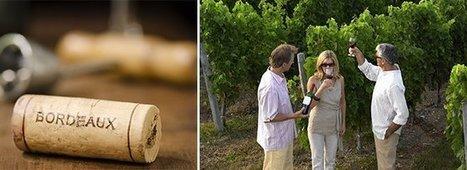 Les enjeux de la campagne Bordeaux primeurs 2014 | Autour du vin | Scoop.it