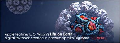 Digizyme - Web & Multimedia Design for the Sciences   Science Data Vizualisation   Scoop.it