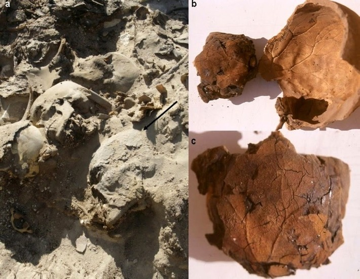 Mummy's brain imprint preserved in 'peculiar' case | The Archaeology News Network | Kiosque du monde : Afrique | Scoop.it