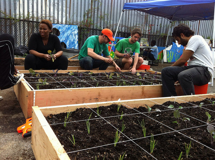 Somerville's first urban farm is ready to grow   Vertical Farm - Food Factory   Scoop.it