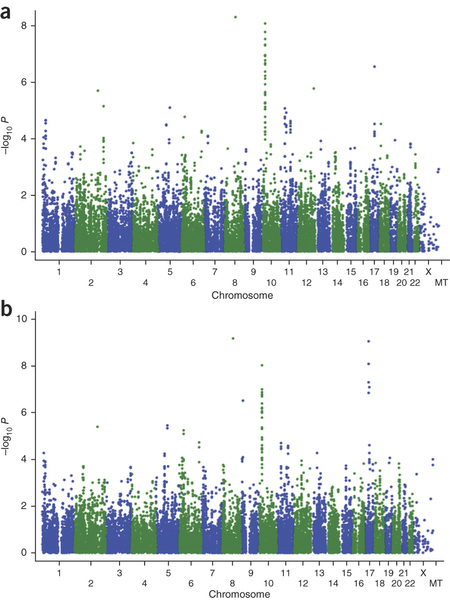 Genome-wide association studies (GWAS) have identified four susceptibility loci for epithelial ovarian cancer | Amazing Science | Scoop.it