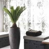 Please Visit Our Gallery | Visit Our Indoor Plants Gallery | Foliage Indoor Plant Hire | Scoop.it